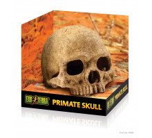 Укрытие для рептилий Exo Terra череп примата