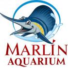 Аквариумные декорации Marlin Aquarium