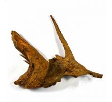 Корень мангрового дерева (водная часть), натуральный 90-150 см