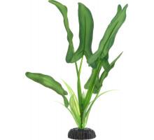 Растение для аквариума Barbus Анубиас Хастифолия, шелковое, 20 см