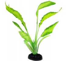 Растение для аквариума Barbus Апоногетон натанс, шелковое, 20 см