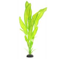 Растение для аквариума Barbus Апоногетон натанс, шелковое, 50 см