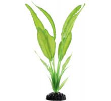 Растение для аквариума Barbus Апоногетон натанс, шелковое, 30 см